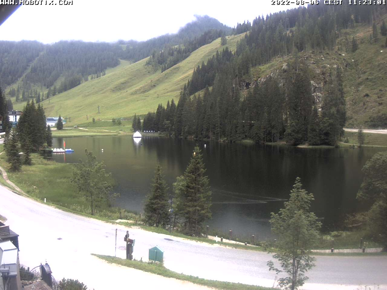 Webcam Weltmeister Skischule Top Alpin Walchhofer Zauchensee