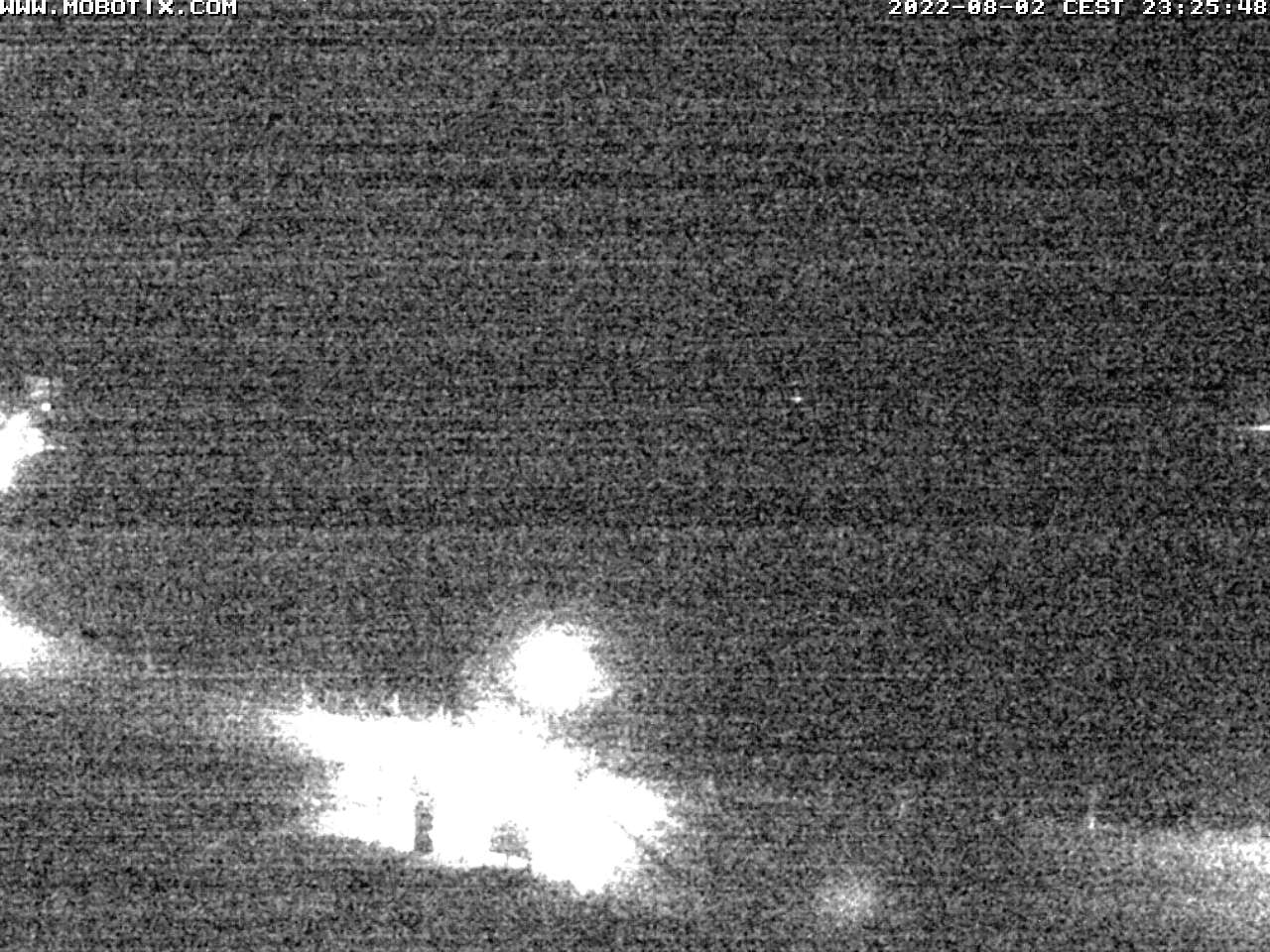 World Champion Top Alpin Wlachhofer Ski School webcam Zauchensee